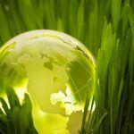 Nace IEBS una escuela de negocios basada en un concepto de formación innovadora y sostenible