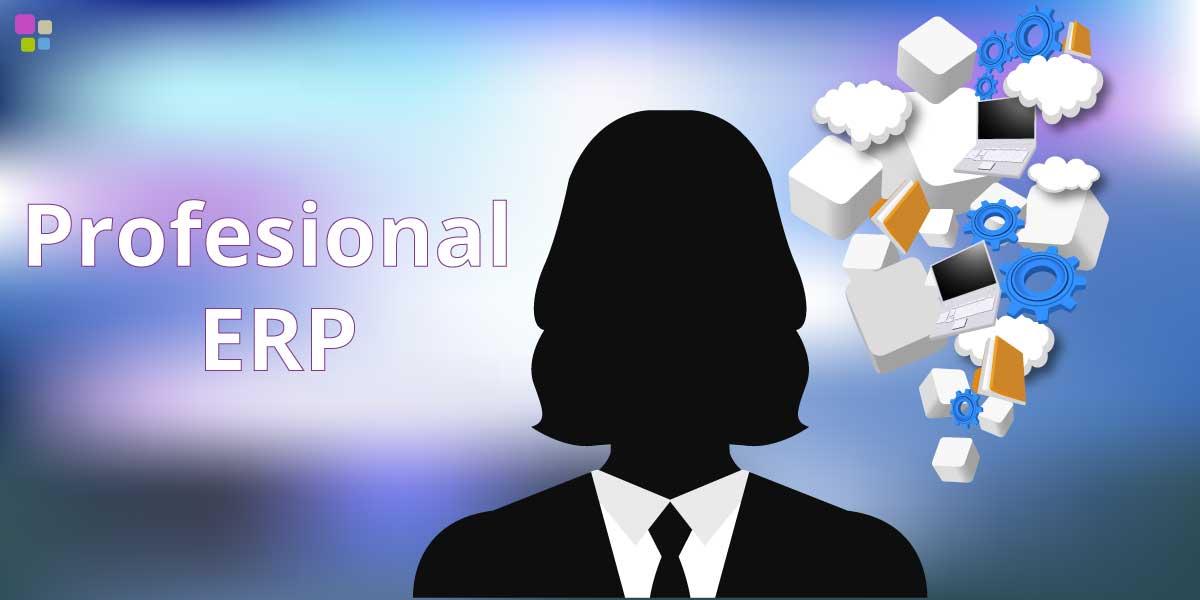 10 Criterios para seleccionar a un profesional ERP