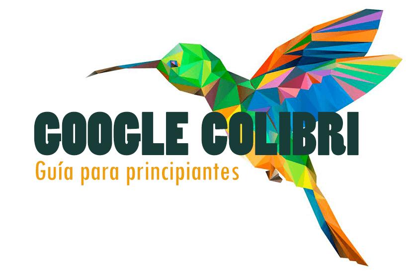 Google Colibri para principiantes: todo lo que necesitas saber sobre el algoritmo