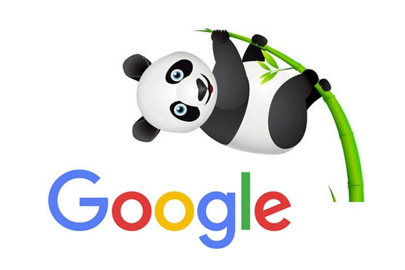Google Panda: cómo funciona