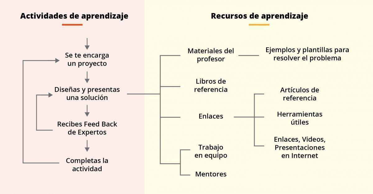 conocimiento IEBS