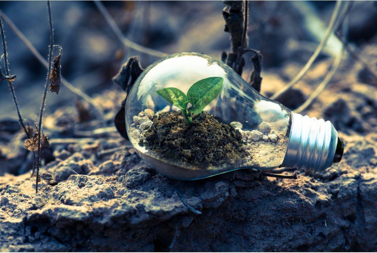 que es greenwashing
